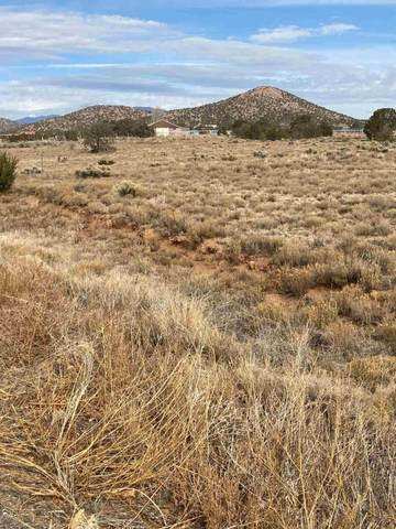 8 Alma Court, Santa Fe, NM 87508 (MLS #202005002) :: Stephanie Hamilton Real Estate