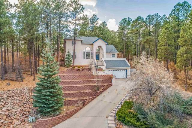 191 Maple Dr, Los Alamos, NM 87544 (MLS #202005016) :: Summit Group Real Estate Professionals