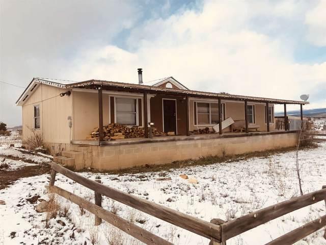 SR 221 House Number 163, Cebolla, NM 87518 (MLS #202005035) :: The Very Best of Santa Fe