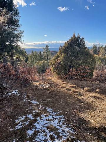 Tract 68 Private Rd 1781, Chama, NM 87520 (MLS #202005039) :: The Very Best of Santa Fe