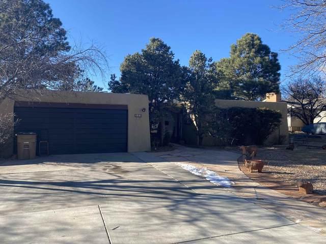 223 El Viento, Los Alamos, NM 87544 (MLS #202005137) :: Summit Group Real Estate Professionals