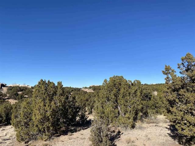 85 Graythorn, Santa Fe, NM 87506 (MLS #202005178) :: Summit Group Real Estate Professionals