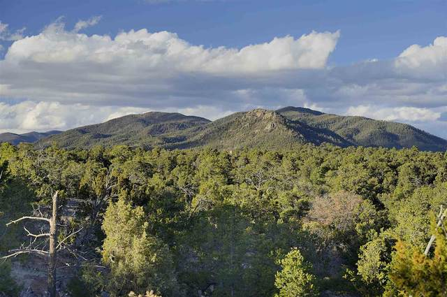 0 Apache Ridge Rd Lot 4, Santa Fe, NM 87505 (MLS #202005198) :: Stephanie Hamilton Real Estate