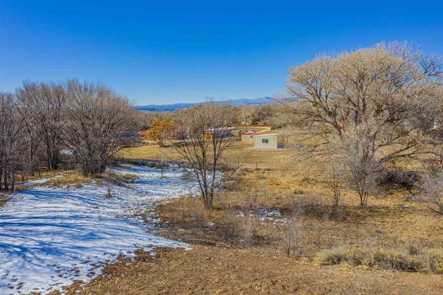 0 Camino Los Arboles, Santa Fe, NM 87506 (MLS #202005219) :: Neil Lyon Group | Sotheby's International Realty