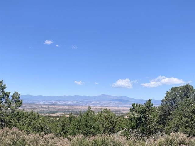 45 Pacheco Meadow, Santa Fe, NM 87506 (MLS #202005311) :: Neil Lyon Group | Sotheby's International Realty