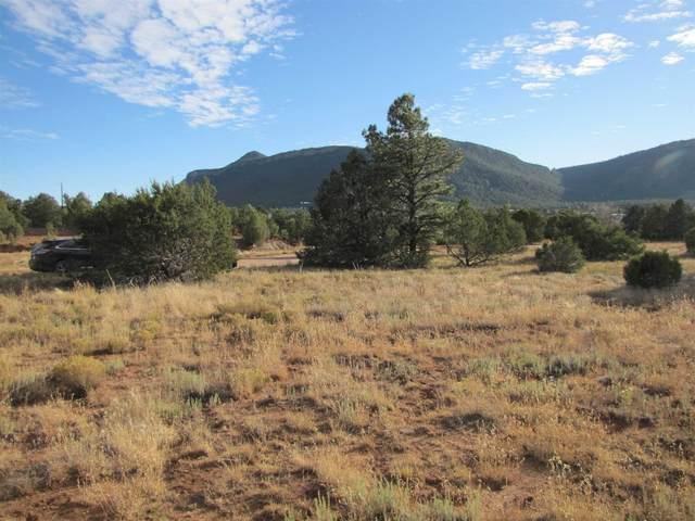 3.548 Acres Lower La Joya Road, Glorieta, NM 87535 (MLS #202100059) :: The Very Best of Santa Fe