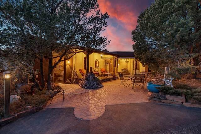 1309 Lejano Lane, Santa Fe, NM 87501 (MLS #202100068) :: Neil Lyon Group | Sotheby's International Realty