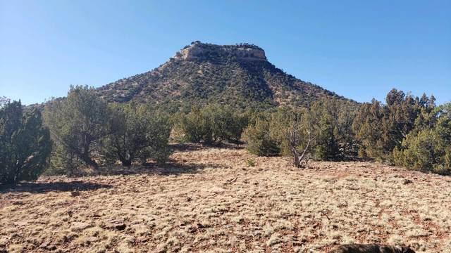 TBD Cr B 28, Chapelle, NM 87560 (MLS #202100099) :: The Very Best of Santa Fe