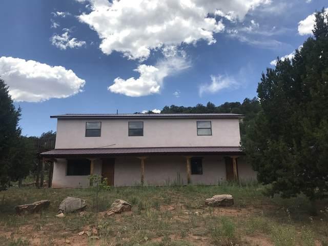 108 Santo Isidro Lane, Ribera, NM 87560 (MLS #202100104) :: Summit Group Real Estate Professionals
