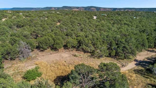 33 Cresta Pequena, Santa Fe, NM 87505 (MLS #202100178) :: Neil Lyon Group | Sotheby's International Realty