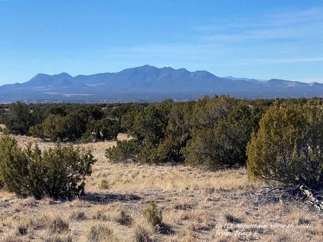 406 Camino Los Abuelos, Galisteo, NM 87540 (MLS #202100222) :: The Very Best of Santa Fe