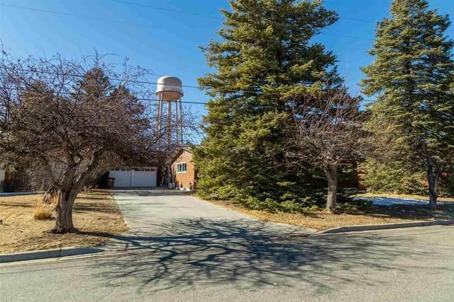 165 Chamisa, Los Alamos, NM 87544 (MLS #202100225) :: Summit Group Real Estate Professionals