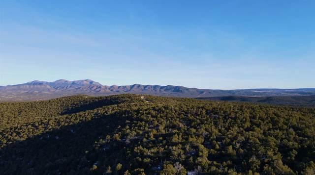 20-25 Canon Escondido, Sandia Park, NM 87047 (MLS #202100245) :: Stephanie Hamilton Real Estate