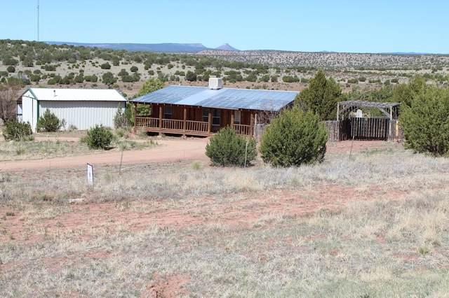 1588 Us Highway 84, Las Vegas, NM 87701 (MLS #202100277) :: Berkshire Hathaway HomeServices Santa Fe Real Estate