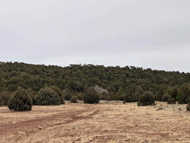 590 Fs 326, Glorieta, NM 87535 (MLS #202100279) :: Berkshire Hathaway HomeServices Santa Fe Real Estate