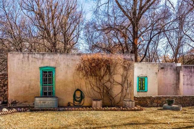 119 La Mancha Road, San Patricio, NM 88348 (MLS #202100302) :: Neil Lyon Group | Sotheby's International Realty