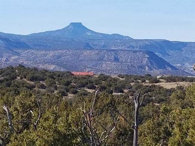 TBD Corona Dr. #51, Abiquiu, NM 87510 (MLS #202100325) :: The Very Best of Santa Fe