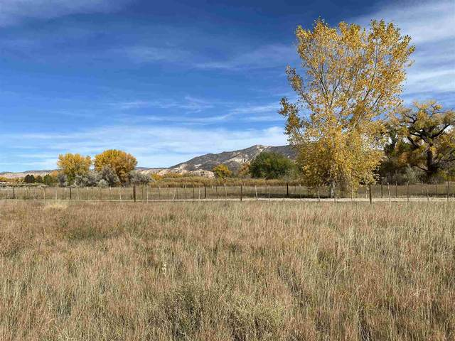 TBD Highway 84, Abiquiu, NM 87510 (MLS #202100524) :: The Very Best of Santa Fe