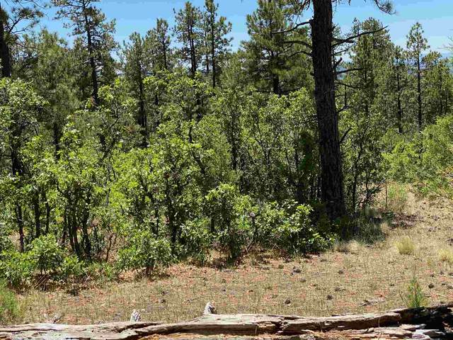 0 Unit 7, Tract 21, Ponderosa S/D, Chama, NM 87520 (MLS #202100539) :: Stephanie Hamilton Real Estate