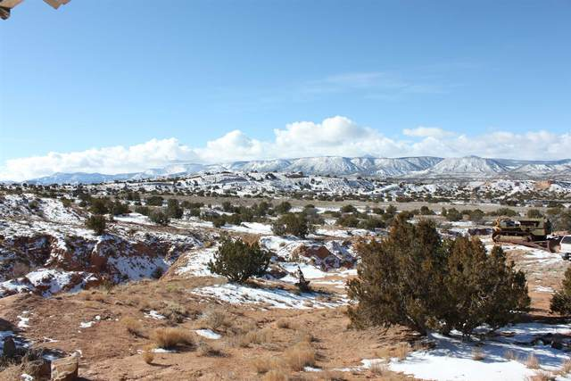 152/154 Apache Trail, Abiquiu, NM 87548 (MLS #202100559) :: Neil Lyon Group | Sotheby's International Realty