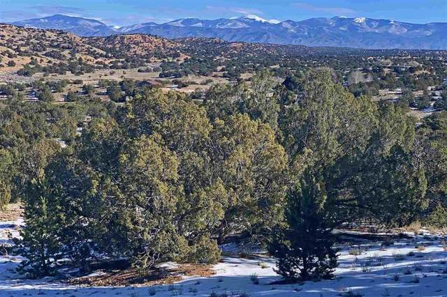 107 Headquarters Trail, Lot 74, Santa Fe, NM 87506 (MLS #202100584) :: Stephanie Hamilton Real Estate