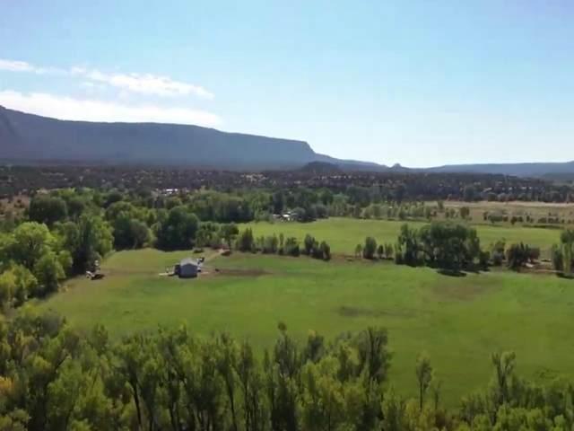 16 County Road B66, Ribera, NM 87560 (MLS #202100734) :: Summit Group Real Estate Professionals