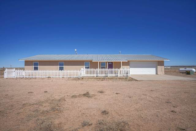 321 White Lakes, Stanley, NM 87056 (MLS #202100780) :: Summit Group Real Estate Professionals