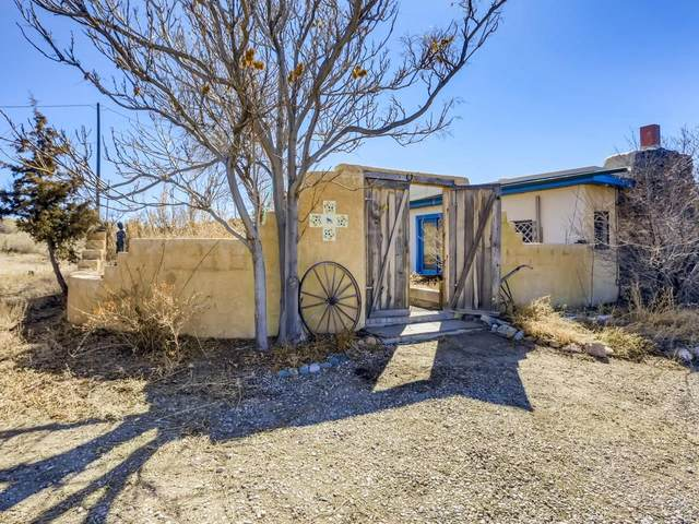 72 Mutt Nelson Road, Santa Fe, NM 87507 (MLS #202100787) :: Summit Group Real Estate Professionals