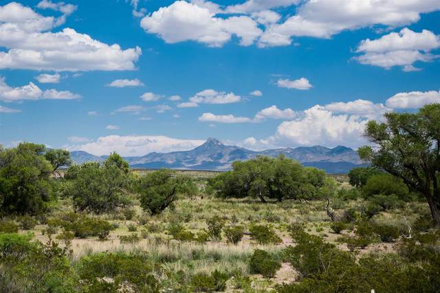 0 Luna Vista Ranch, Deming, NM 88030 (MLS #202100812) :: Stephanie Hamilton Real Estate