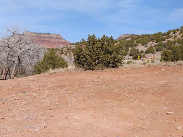 00 Highway 485, Jemez Pueblo, NM 87024 (MLS #202100814) :: Neil Lyon Group | Sotheby's International Realty