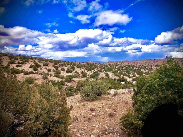 1 Camino De Tecolote, Placitas, NM 87043 (MLS #202100841) :: Stephanie Hamilton Real Estate