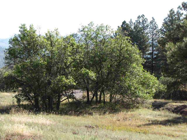 0 Tract 1, Lakes On The Chama, Chama, NM 87520 (MLS #202100960) :: Stephanie Hamilton Real Estate