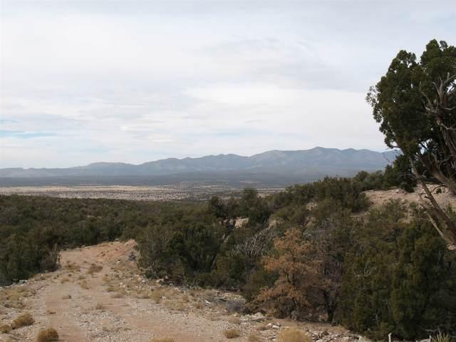 1108 Moho Trail, Mountainair, NM 87036 (MLS #202100982) :: Stephanie Hamilton Real Estate
