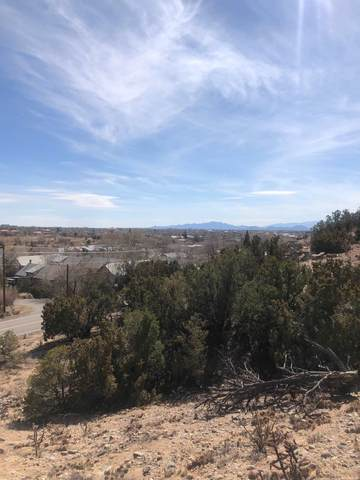 0 W Alameda, Santa Fe, NM 87507 (MLS #202101002) :: Stephanie Hamilton Real Estate