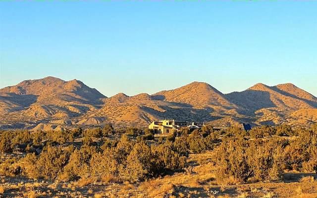 1 Mesa Bonita Ranch, Cerrillos, NM 87010 (MLS #202101015) :: Neil Lyon Group | Sotheby's International Realty