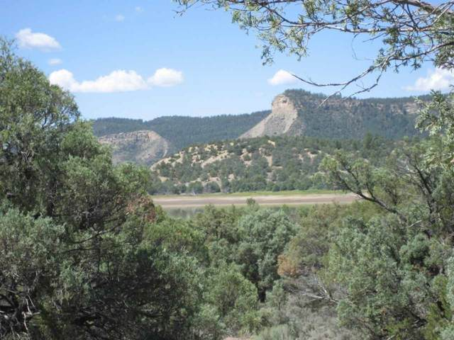 0 Block 8, Lot 20, Pinon Ridge, Los Ojos, NM 87551 (MLS #202101060) :: Stephanie Hamilton Real Estate