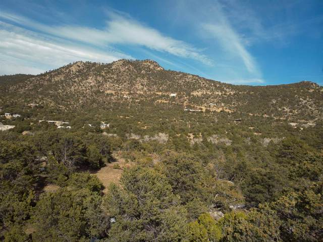 28 Sena Lane Lot 4, Santa Fe, NM 87505 (MLS #202101067) :: Neil Lyon Group | Sotheby's International Realty