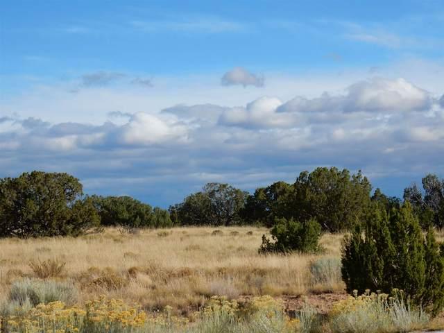 2 Hacienda Del Canon, Santa Fe, NM 87506 (MLS #202101073) :: Neil Lyon Group | Sotheby's International Realty