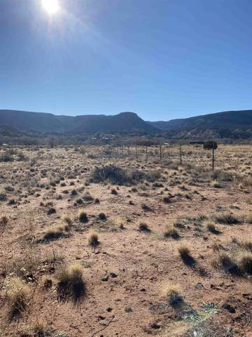 Tract 2C-1 Hwy 84, Abiquiu, NM 87510 (MLS #202101091) :: The Very Best of Santa Fe