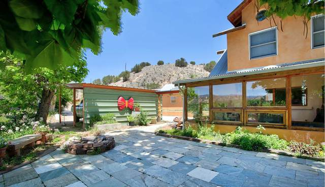 53 County Road 142, Medanales, NM 87548 (MLS #202101105) :: Summit Group Real Estate Professionals