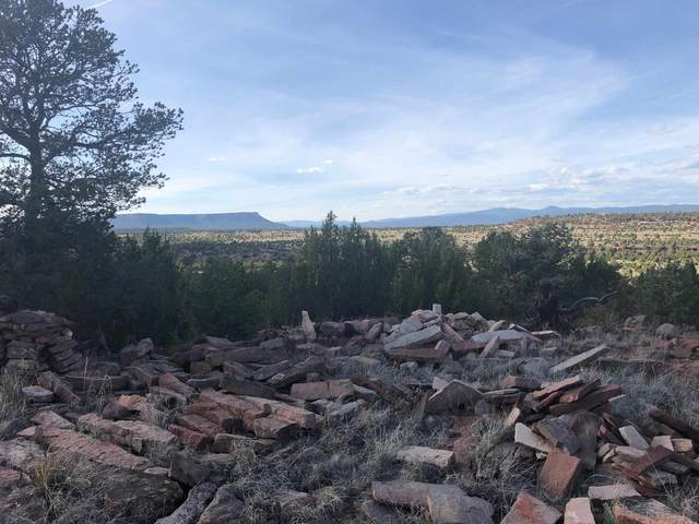 El Pueblo, Nm Area, El Pueblo, NM 87560 (MLS #202101137) :: Stephanie Hamilton Real Estate