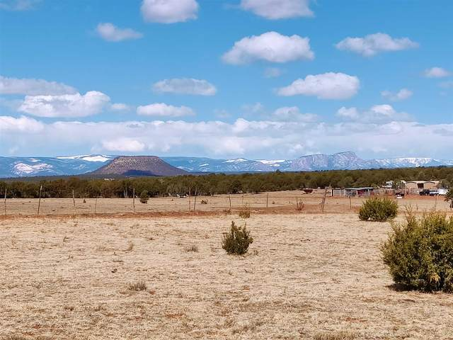 4.9 acres Off Camino De Leon, Tecolote, NM 87701 (MLS #202101140) :: Summit Group Real Estate Professionals