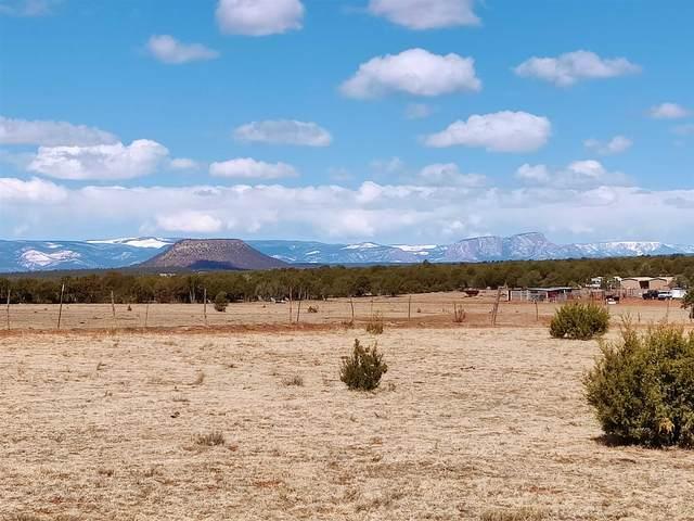 4.9 acres Off Camino De Leon, Tecolote, NM 87701 (MLS #202101140) :: Neil Lyon Group | Sotheby's International Realty