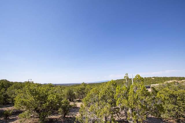 1791 Calle Arbolitos, Santa Fe, NM 87506 (MLS #202101147) :: Neil Lyon Group | Sotheby's International Realty