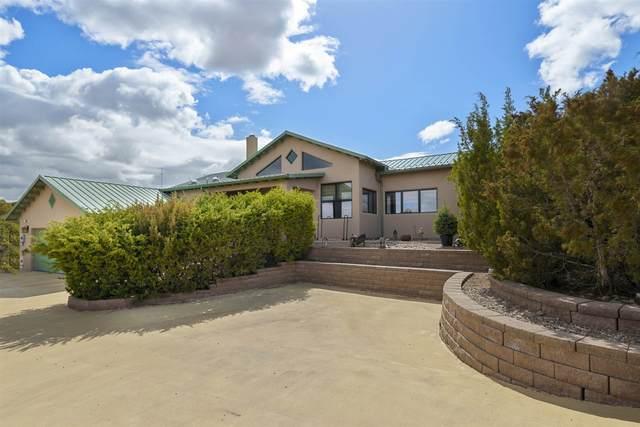 558 Camino Don Emilio, Santa Fe, NM 87507 (MLS #202101172) :: Summit Group Real Estate Professionals