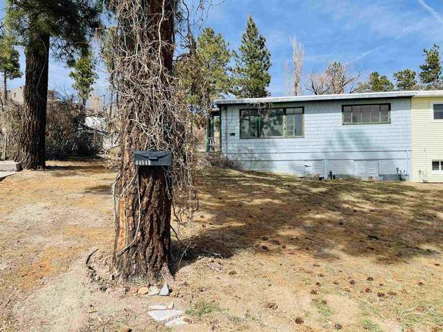 4454 Alabama B, Los Alamos, NM 87544 (MLS #202101206) :: The Very Best of Santa Fe