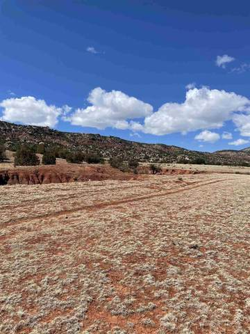 County Rd 0211 Tract 1 & 2, Gallina, NM 87064 (MLS #202101210) :: Stephanie Hamilton Real Estate