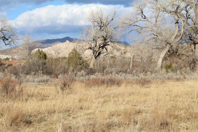 TBD In The Vicinity Of Barranco, Abiquiu, NM 87510 (MLS #202101213) :: Summit Group Real Estate Professionals