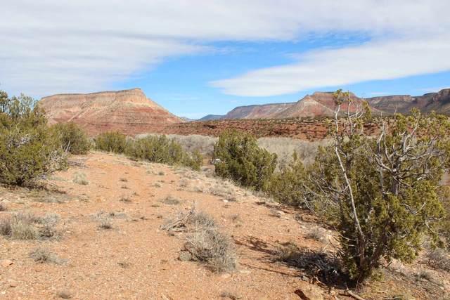 0 Highway 485, Jemez Pueblo, NM 87025 (MLS #202101221) :: Stephanie Hamilton Real Estate