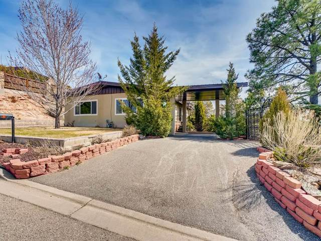 700 Pinon Drive, Santa Fe, NM 87501 (MLS #202101227) :: Stephanie Hamilton Real Estate